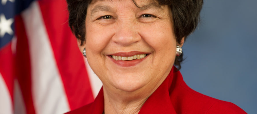 Congresswoman Frankel's fight to sell foreign flagged yachts in Florida